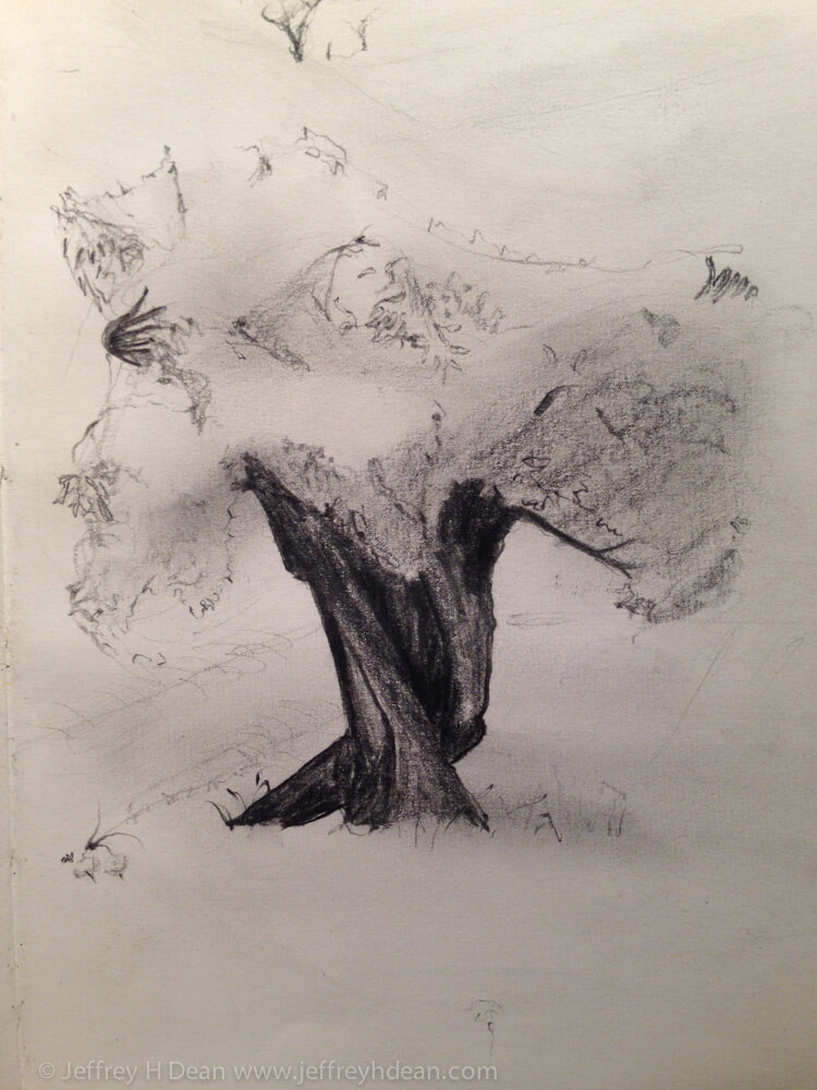 Sketch of the spirit of an ancient olive tree.
