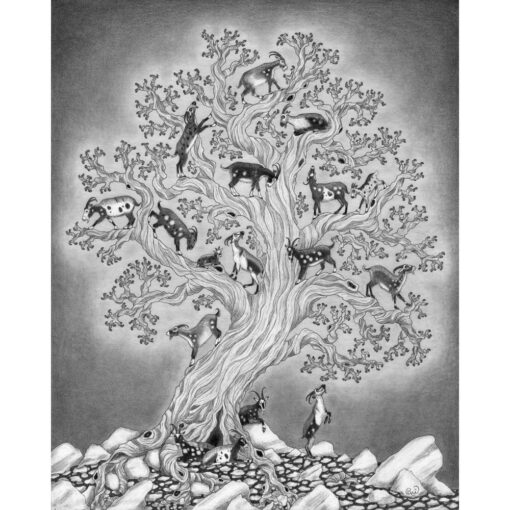 A flock of goats climbs in the branches off a great tree in this giclee print from a graphite drawing.