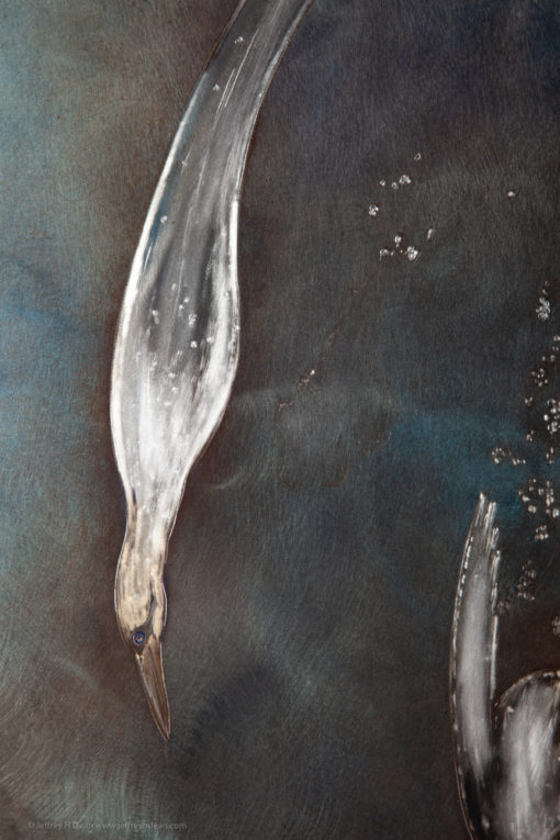 Metal wall art in engraved and heat tinted steel depicting an underwater scene of diving gannet birds.