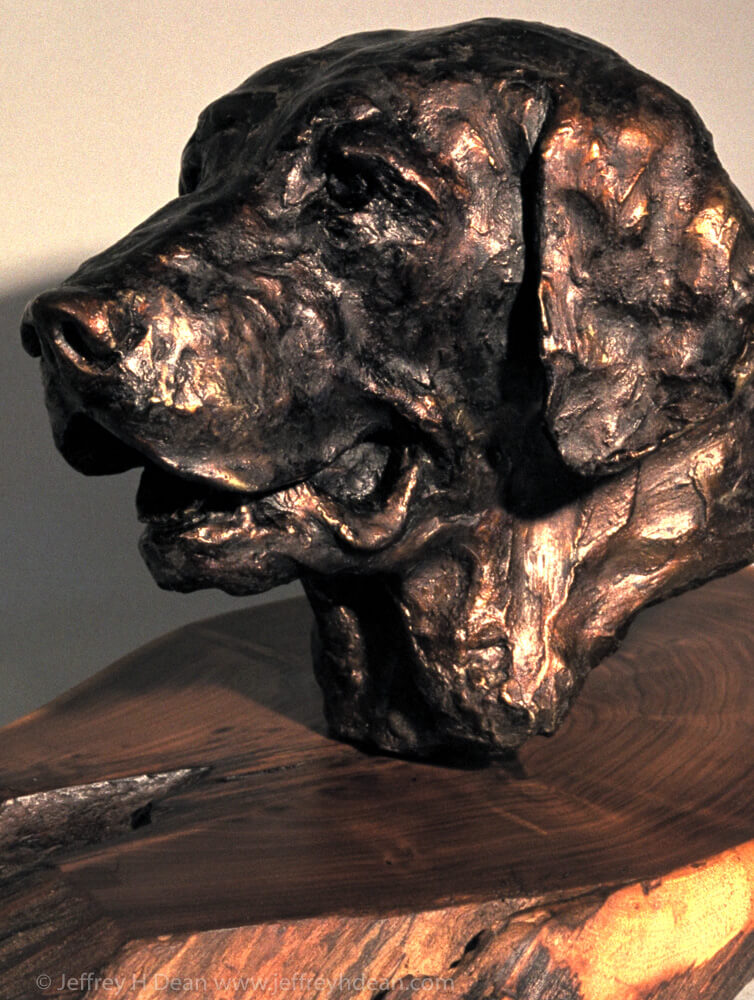 """Portrait of """"Sir Bailey of Scott Mill"""" made during a craft show in Blowing Rock, NC."""