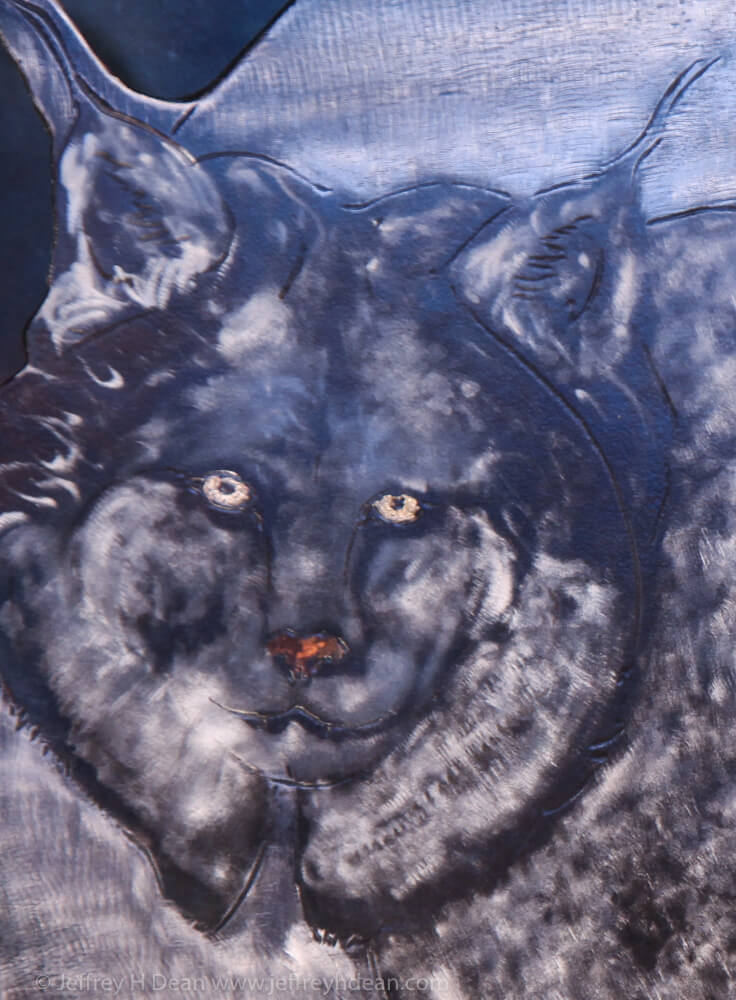 Detail of lynx.