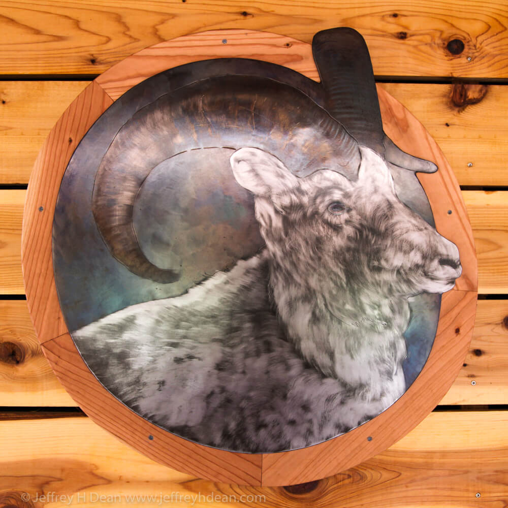 Dall sheep. Heat tinted and engraved steel wall piece.