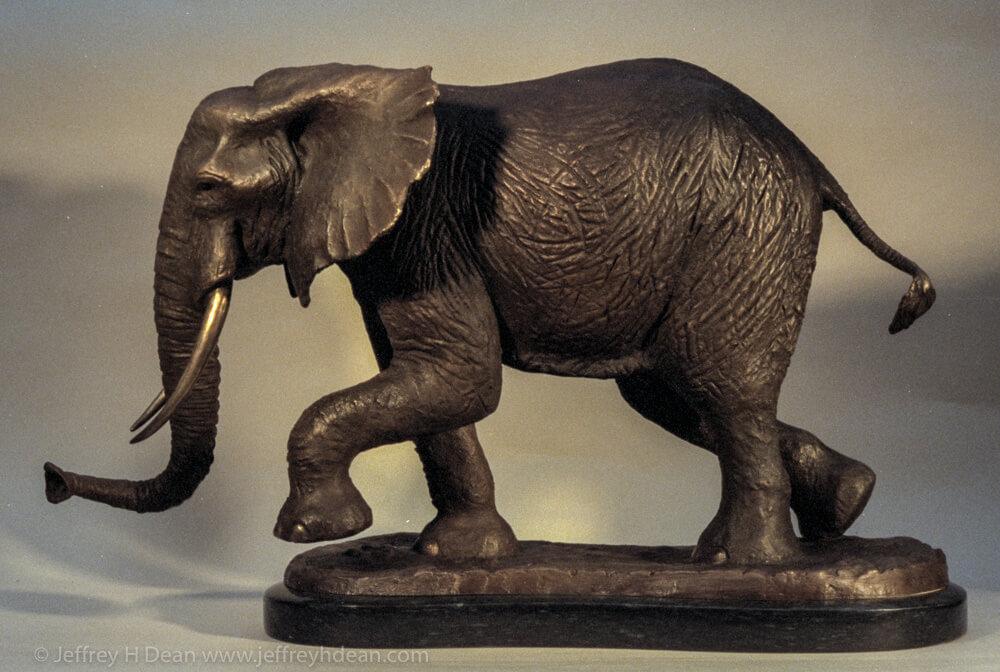 Walking African elephant.